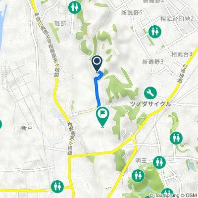 Shindo, Minami, Sagamihara to Zama, Zama