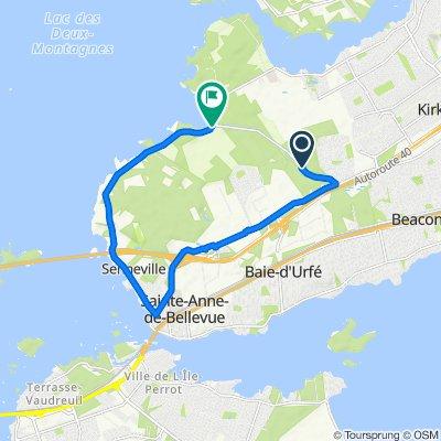 119–121 Ch de l'Anse-à-l'Orme, Kirkland to 393–399 Ch de Senneville, Ste-Anne-de-Bellevue