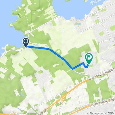 393–399 Ch de Senneville, Ste-Anne-de-Bellevue to 7 Rue Grandtree-Crt, Kirkland