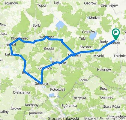 Droga Wojewódzka 803 20, Żebrak do 21A, Żebrak