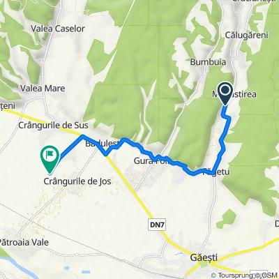 DJ702E, Comuna Cobia to Comuna Crângurile