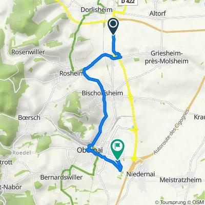 De D500, Dorlisheim à 2 Rue Aloyse Clauss, Obernai