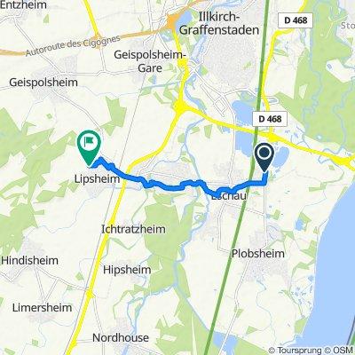 De 1C Rue des Fusiliers Marins, Eschau à 22 Rue des Vergers, Lipsheim