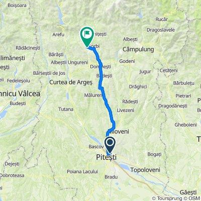 Strada Cavalerului 16, Valea Mare-Podgoria to DC270B, Brăduleț