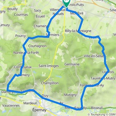 _02 Tour de la Montagne de Reims (de Champfleury) 63km  650Hm