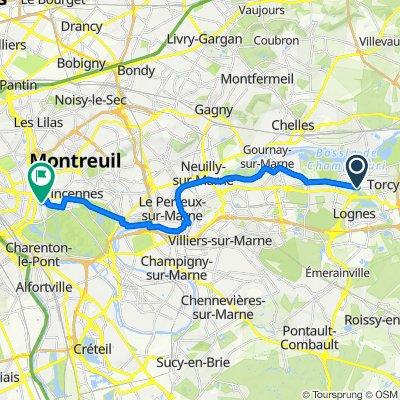 De Cours de l'Arche Guédon, Torcy à 8 Place Charles Digeon, Saint-Mandé