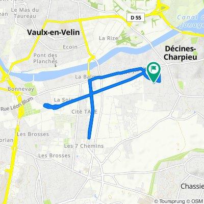 30 Rue Paul Bert, Décines-Charpieu to 8 Allée des Fleurs, Décines-Charpieu