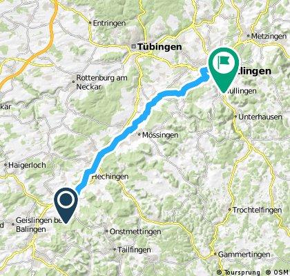 Bisingen-Reutlingen