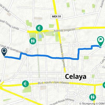 De Calle Piracanto 102–130, Celaya a Calle Guillermo Prieto 604, Celaya