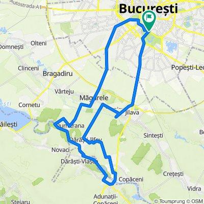 Bucuresti - Alunisu - 1 Decembrie - Darasti-Vlasca - Pruni - Dumitrana - Magurele - Bucuresti