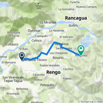 De Cruce Ruta 66 (San Vicente) - Guacarhue - Cruce H-60 (Quinta de Tilcoco), Quinta de Tilcoco a Cruce H-409 (Santa Amalia) - Pimpinela, Requínoa