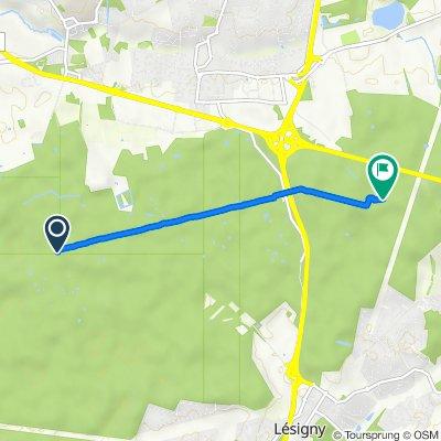 De Carrefour des Huit Routes, Sucy-en-Brie à Chemin des Fougères, Pontault-Combault