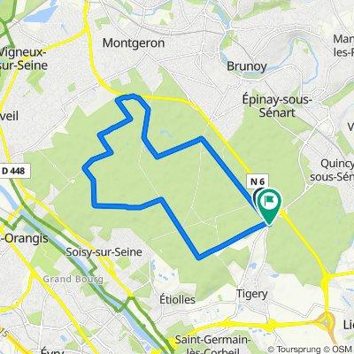 De Route Forestière d'Ormoy, Étiolles à Bois de l'Abbaye d'Yerres, Tigery