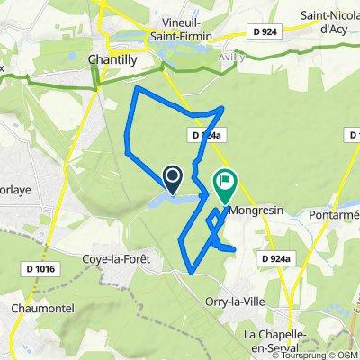 Itinéraire à partir de Route Forestière des Tombes, Chantilly