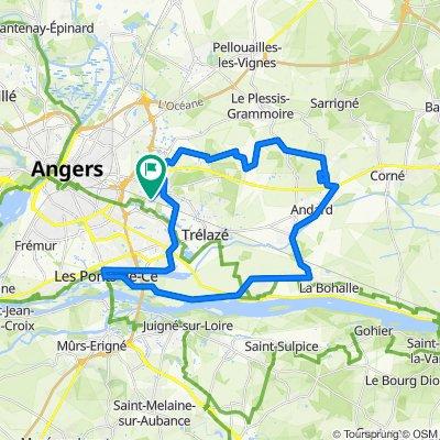 Route stable en Saint-Barthélemy-d'Anjou