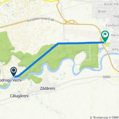 Unnamed Road to Calea Bodrogului 16, Arad