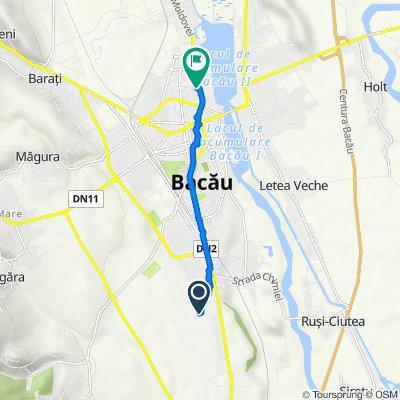 Bike Service , Bacău to Strada Ștefan cel Mare 13b, Bacău