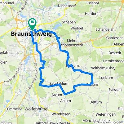 Über die Felder Braunschweig Süd