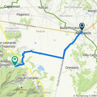 Da Viale Regina Elena 16/A, Altopascio a Via di Sant'Andrea 135, Capannori