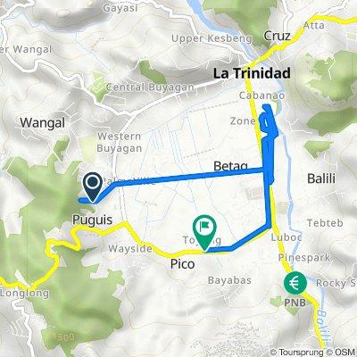 Unnamed Road, La Trinidad to Pico Road 237, La Trinidad