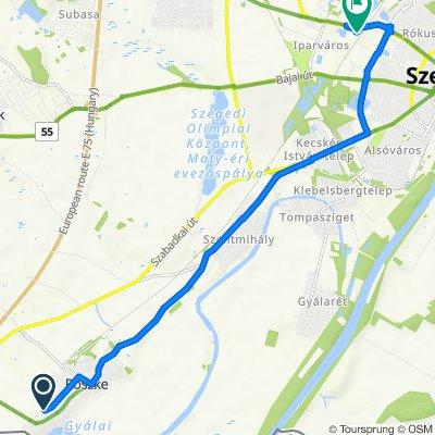 Rákóczi Ferenc utca 125, Röszke to Dorozsmai út 2-4, Szeged