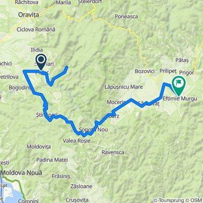 Ziua 4 Potoc - Valea Bei - Sasca Montana - Carbunari - Eftimie Murgu