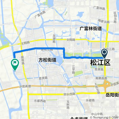 Route from Nanqing Road No.699, Shanghai