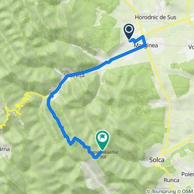 Route from Strada Izvor 374, Marginea