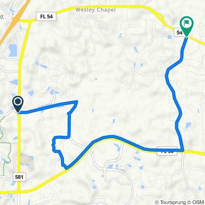 Mystic Oak Blvd, Wesley Chapel to Meadow Pointe Blvd, Wesley Chapel