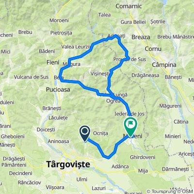 DC16 122, Gorgota to Strada Garajului 1, Moreni
