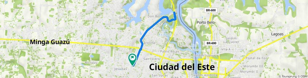 De Julio Cesar Riquelme, Ciudad del Este a Julio Cesar Riquelme, Ciudad del Este