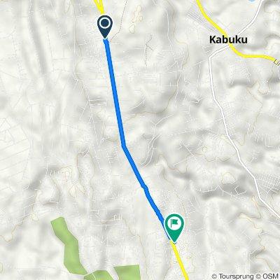 Arironi's to Eldoret-Malaba Road