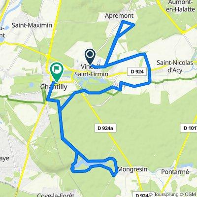 De Promenade d'Egmont, Vineuil-Saint-Firmin à 130 Rue du Connétable, Chantilly