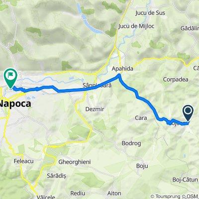Route to Strada Vaslui 29, Cluj-Napoca