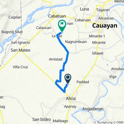 Unnamed Road, Alicia to Unnamed Road, Cabatuan