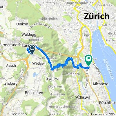 Ettenbergstrasse 73, Wettswil nach Heinrich-Federer-Strasse 7, Zürich