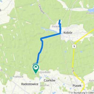 Radostowice do Radostowice
