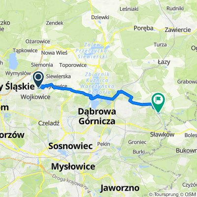 Polna 22B, Rogoźnik do Białej Przemszy 66, Dąbrowa Górnicza