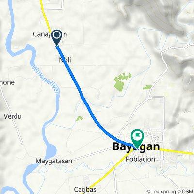tanguile street, poblacion, bayugan city