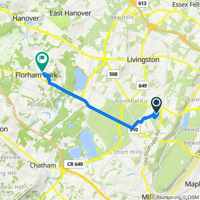 Cornell Drive 51, Livingston to Shetland Road 1, Florham Park