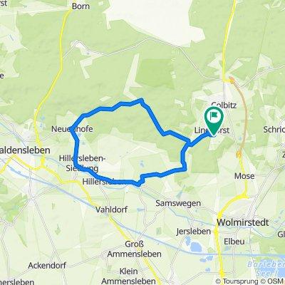 Lindhorst - Jägerstieg - Neuenhofe - Hillersleben - Meseberg - Lindhorst - Lindhorst