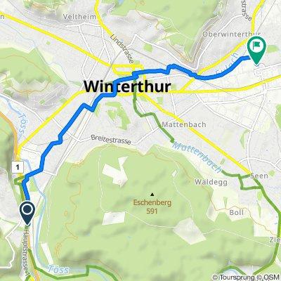 A1, Winterthur nach Im Link 3, Winterthur