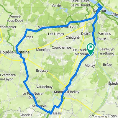 De Rue de Doué 244, Artannes-sur-Thouet à Rue de Doué 244, Artannes-sur-Thouet