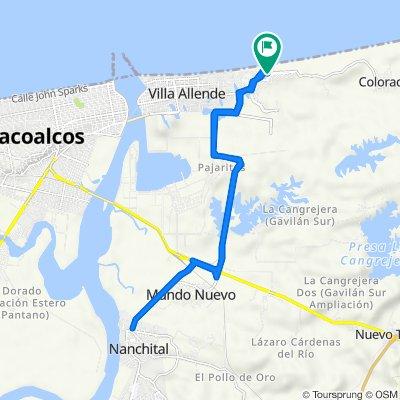 De Calle Petunia 5–13, Allende a Calle Petunia 5–13, Allende