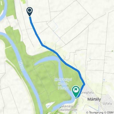 Route to Vásárhelyi utca, Mártélyi üdülőterület