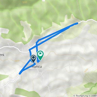 Route from DJ703F, Runcu