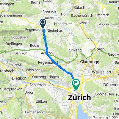 Leuenpungertstrasse 10, Dielsdorf nach Wasserwerkstrasse 94, Zürich