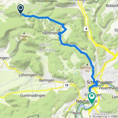 Route nach Victor-von-Bruns-Strasse, Neuhausen