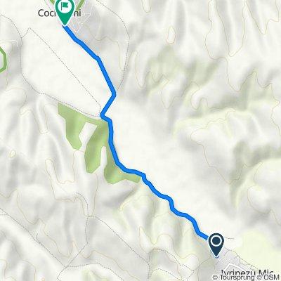 DJ223B, Ivrinezu Mic to Unnamed Road, Cochirleni