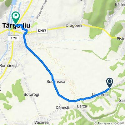 DJ663 76, Ungureni to Strada Vasile Alecsandri 51, Târgu Jiu
